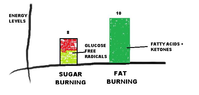 21 Day Ketogenic Diet Meal Plan - Burn Stubborn Fat