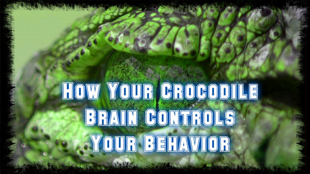 How Your Reptilian Brain Controls Your Behavior Without You Even