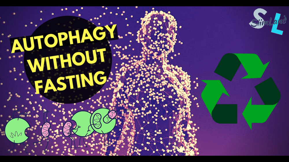 How to Activate Autophagy Without Fasting - Siim Land