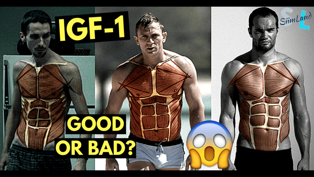IGF-1 Good or Bad? - Intensifying IGF-1 for Health and