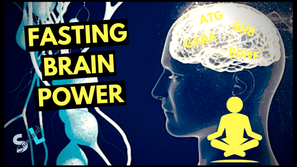Intermittent Fasting and Brain Function - Siim Land