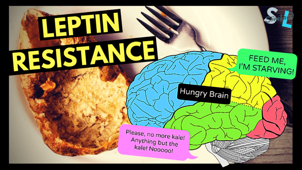 The Self Starving Brain >> How To Fix Leptin Resistance Siim Land