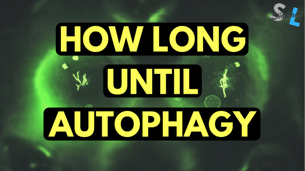 minimum fast on keto diet for autophagy