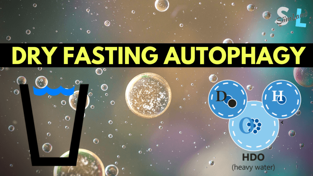 Does Dry Fasting Increase Autophagy? - Dry Fasting VS Water